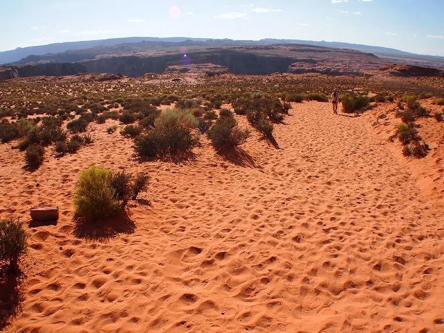 アリゾナの景色