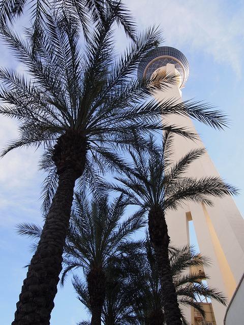 ヤシの木越しのストラトスフィアタワー
