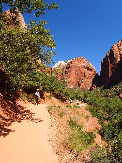 山道をハイキング