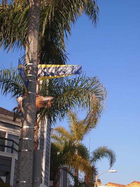 ニューポートの標識