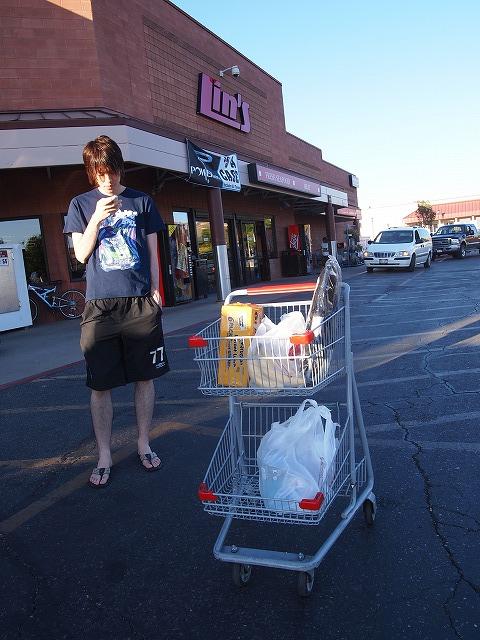 ショッピングカートを押す