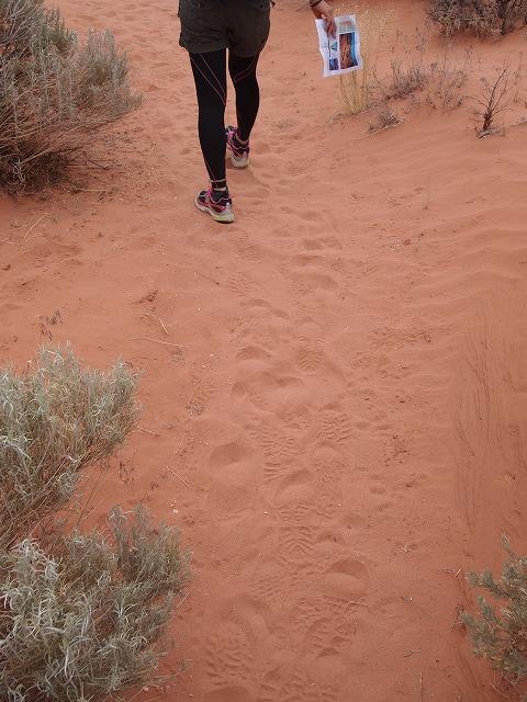 地図片手に砂の道を行く