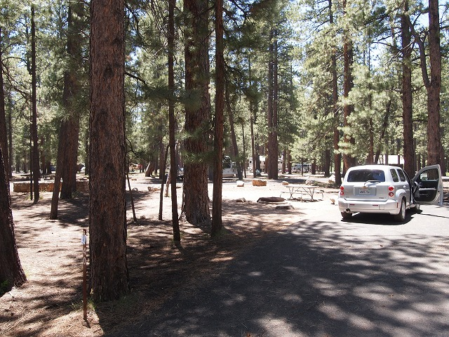 キャンプ駐車場