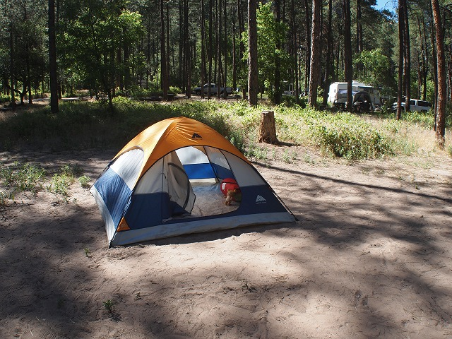 キャンプサイトでテント張り